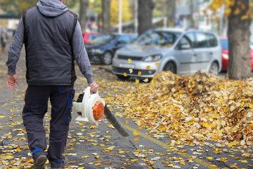 Foglie e pulizia giardino